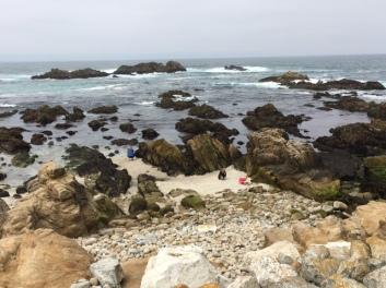 california 12