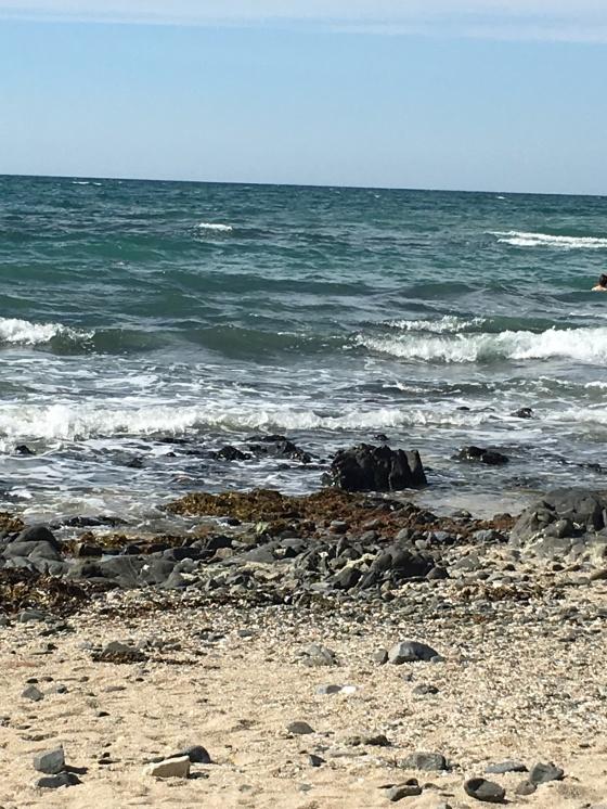 granville plage 14 aug -1