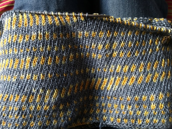 brioche-after-ripping-back
