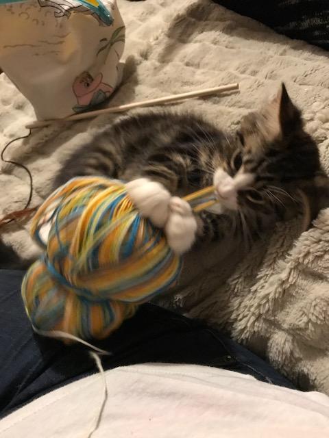odinn and yarn